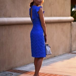 Zara Woman Cobalt Blue Lace Cutout Dress